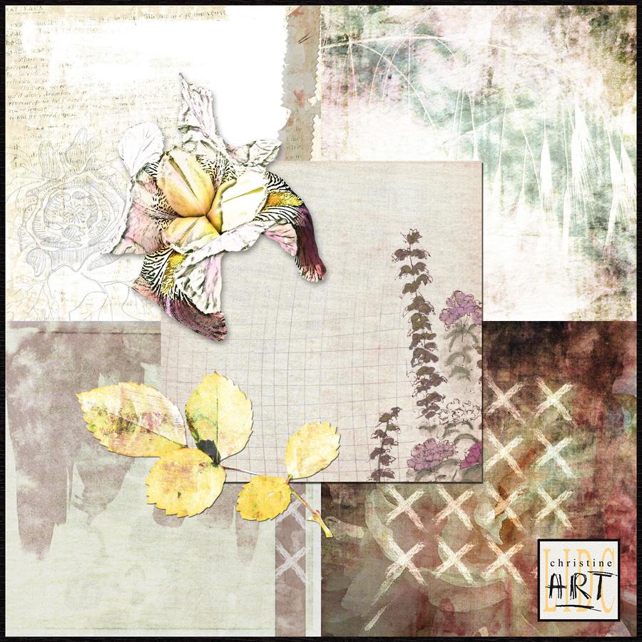 ART12-preview2-900.jpg
