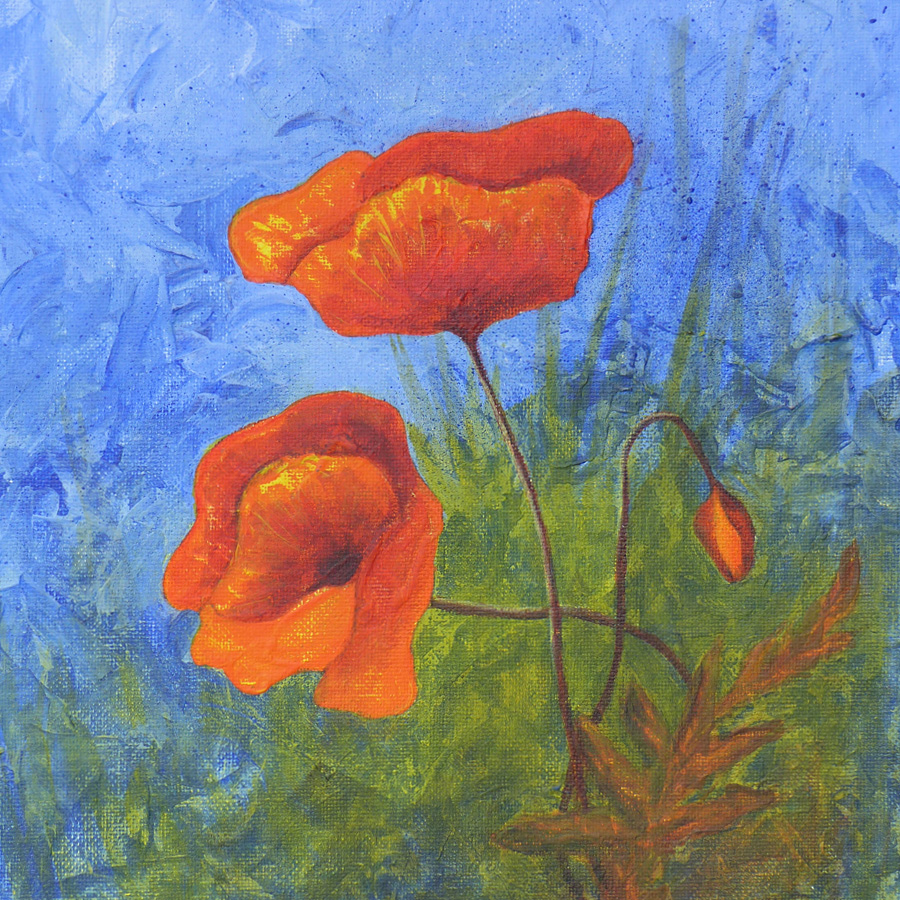 Workshop-coquelicots900-img3